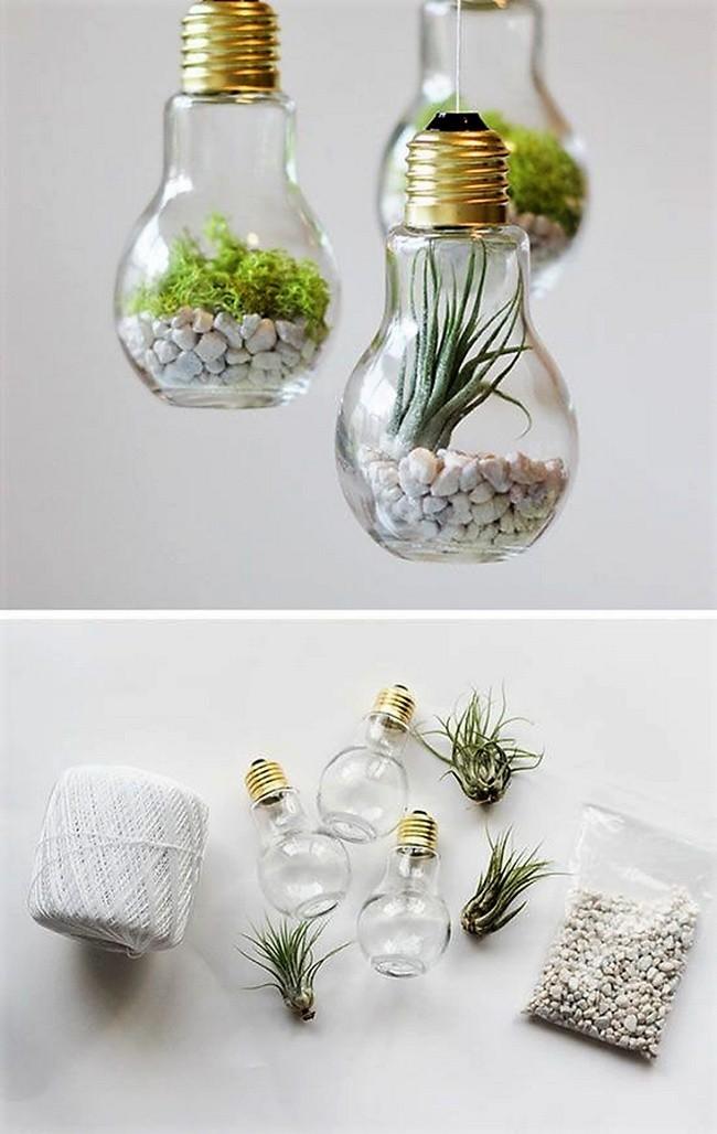 Cách làm chậu cây, chậu hoa thả treo từ bóng đèn decor