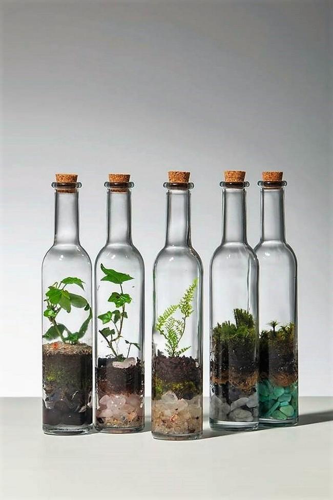 Ngoài bóng đèn decor ra, bạn cũng có thể áp dụng cho các chai nước, lọ thủy tinh với nút chai.