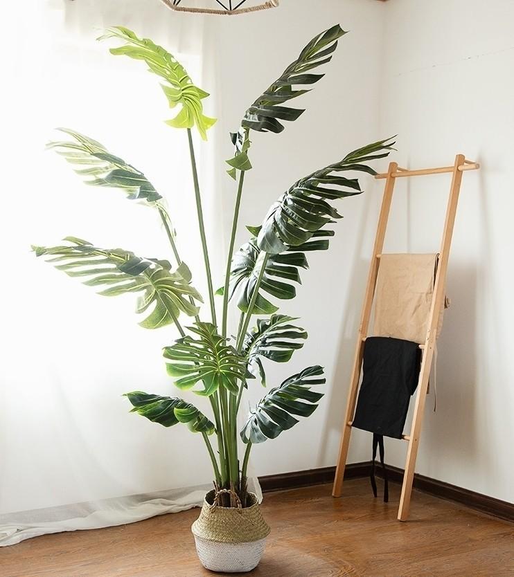 Trong tất cả loại cây cảnh giả thì cây Mostera Tropical thích hợp trang trí ở các không gian có phần mộc mạc và Nordic.