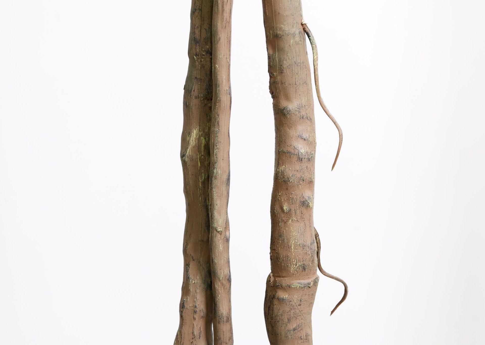 Phần thân cây được làm chi tiết với những đường nét gồ ghề