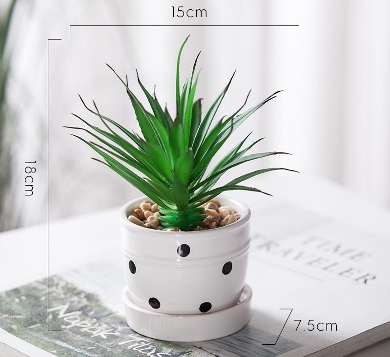 Chậu cây Grow mini mẫu G