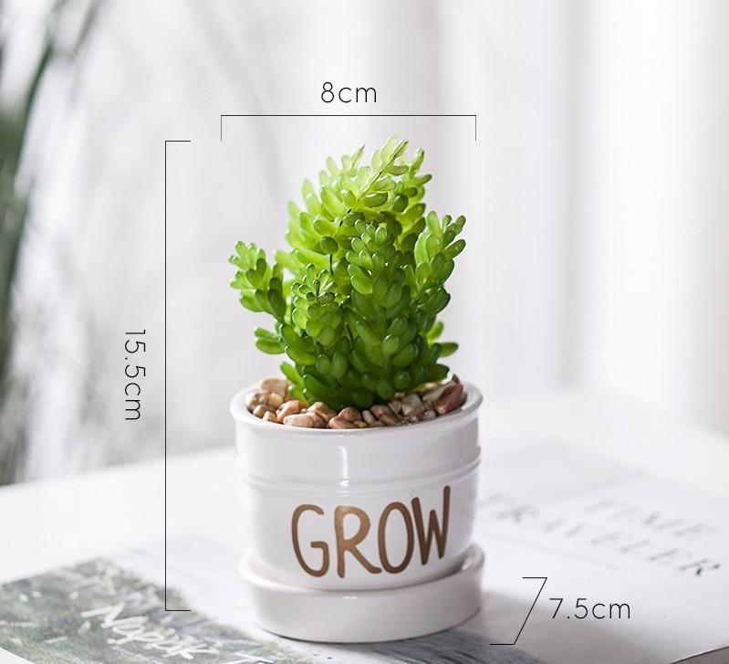 Chậu cây Grow mini mẫu D