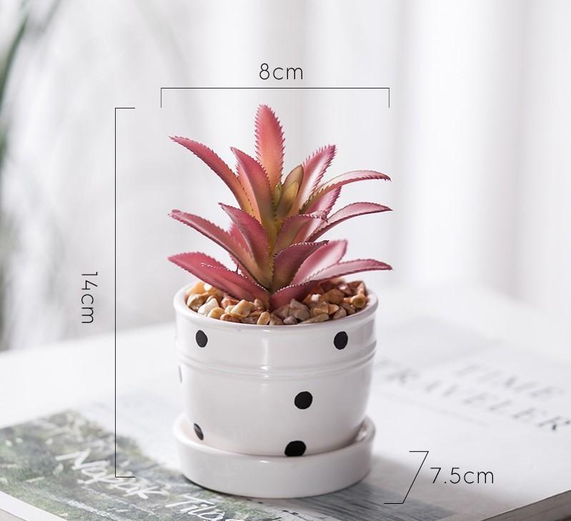 Chậu cây Grow mini mẫu C