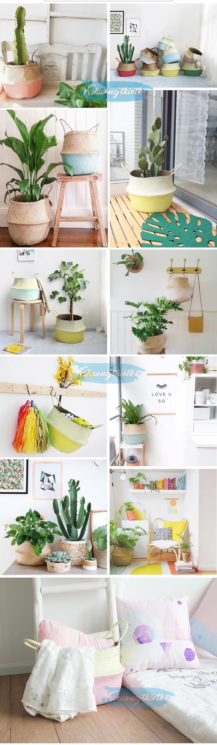 Giỏ cói đựng đồ, giỏ cói đựng cây, giỏ cói trồng cây