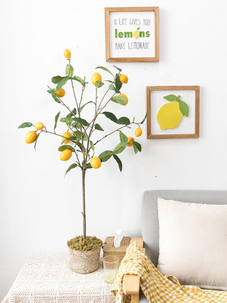 Cây chanh giả Bắc Âu mang phong cách nhẹ nhàng và ngọt ngào