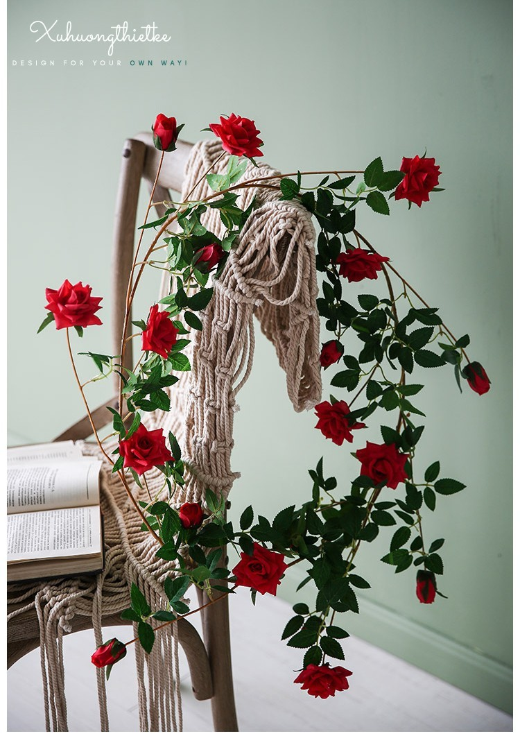 Dây hoa hồng leo pháp trong trang trí