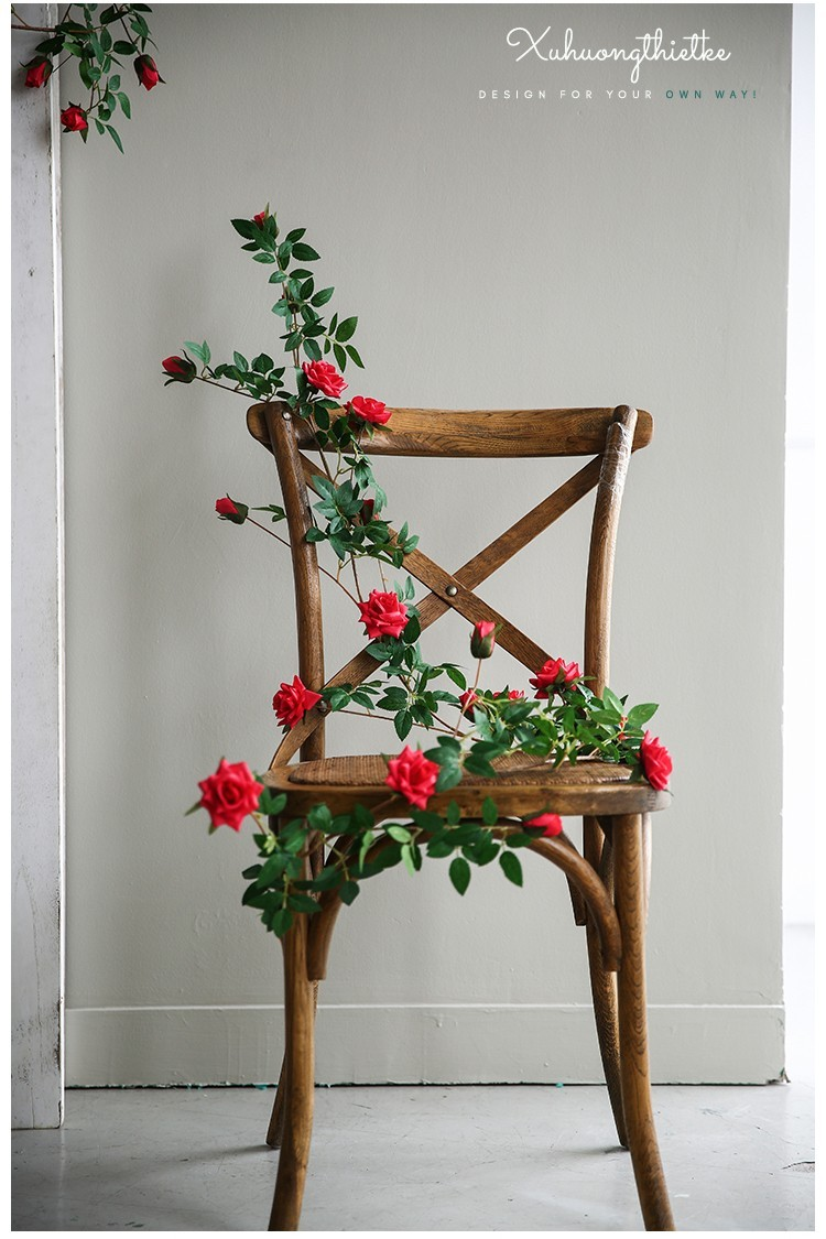 Dây hoa hồng leo dùng trong trang trí và decor