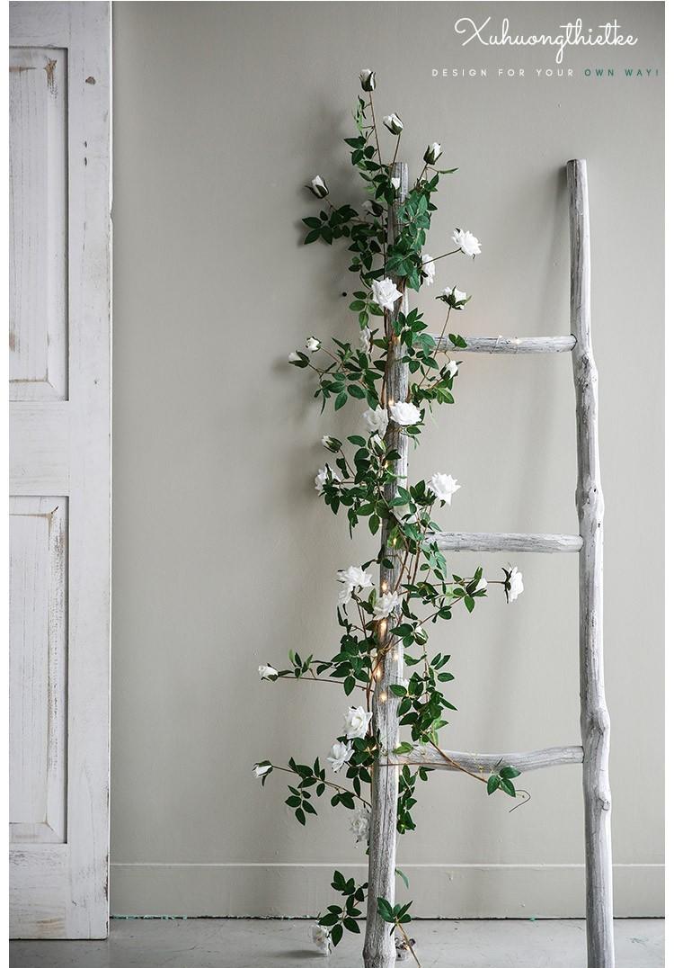 Dây hoa hồng leo khi trang trí cùng với thang