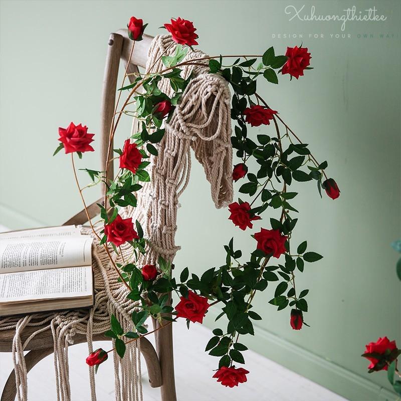 Dây hoa hồng leo trang trí
