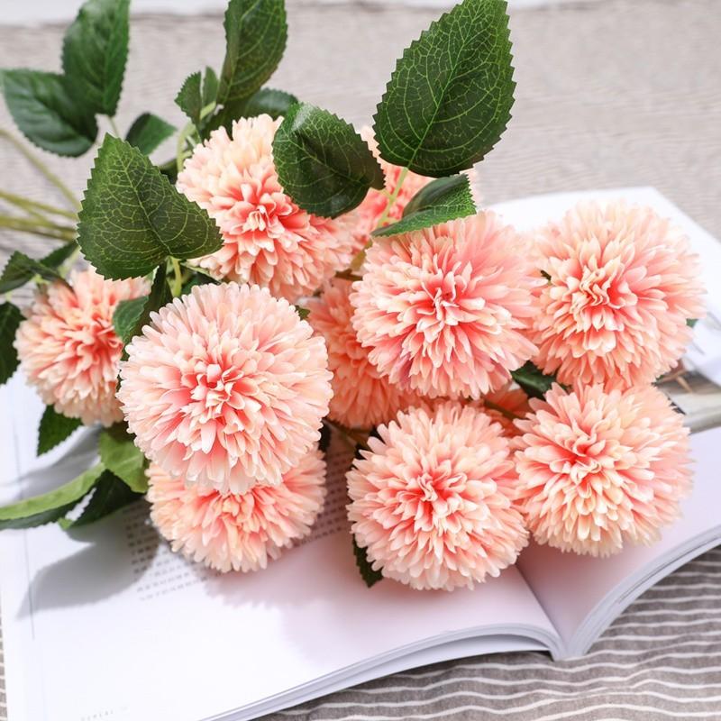 Hoa cẩm tú cầu màu hồng phấn
