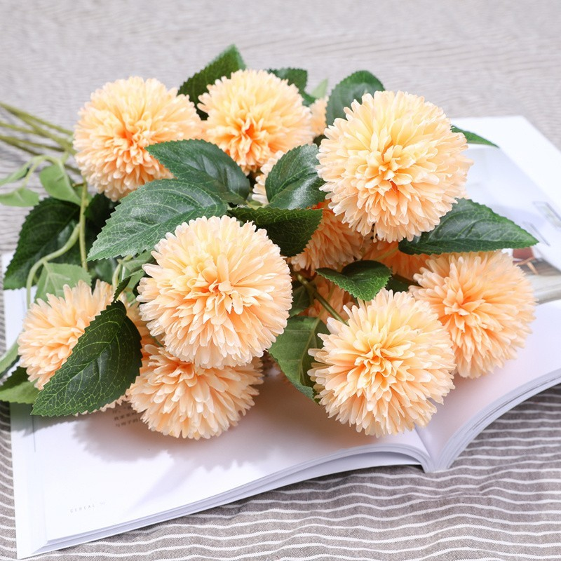 Hoa cẩm tú cầu màu cam